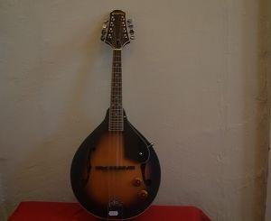 Pilgrim Vintage Mandolin