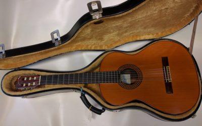 Håndbygget gitar selges med etui